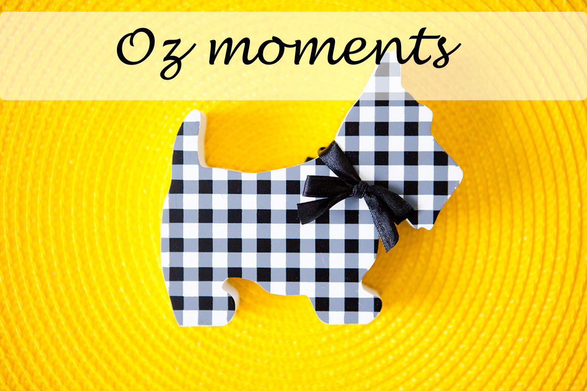 Oz moments - what surprised you in the new culture
