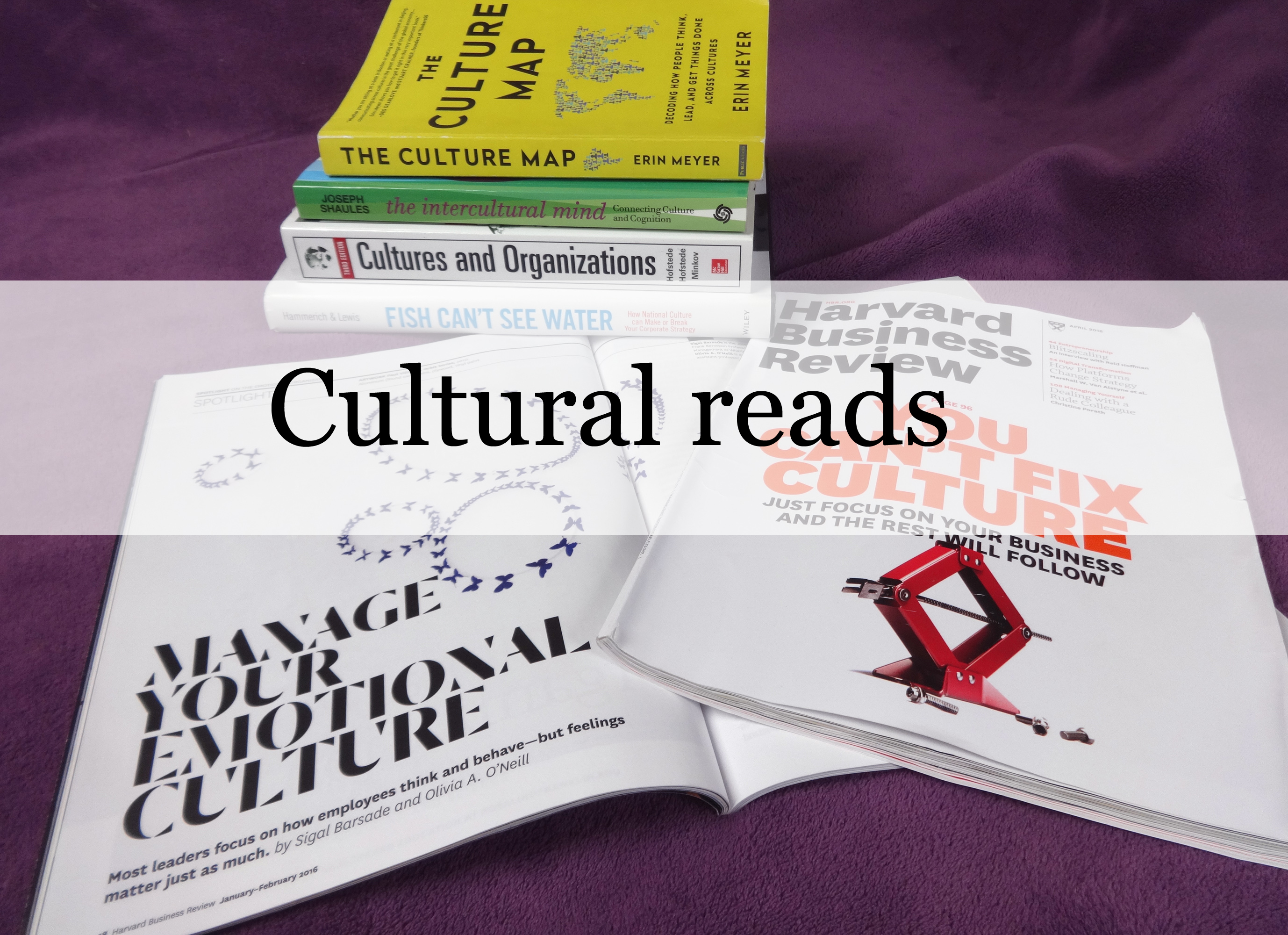 Cultural reads_ProjectAbroad.Eu